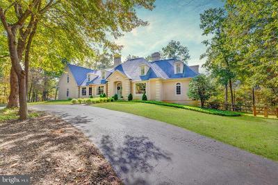 Oakton Single Family Home For Sale: 11108 Deville Estates Drive