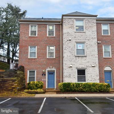 Annandale, Falls Church Condo For Sale: 4308 Evergreen Lane #03-G