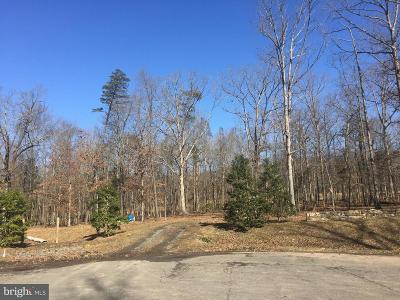 Centreville Residential Lots & Land For Sale: 6501 Bull Run Woods Trail