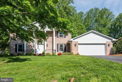 McLean Single Family Home For Sale: 733 Ridge Drive