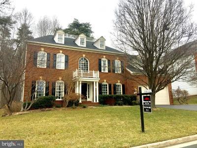 Fairfax Single Family Home For Sale: 12804 Owens Glen Drive