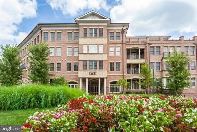 McLean Condo For Sale: 1781 Chain Bridge Road #207