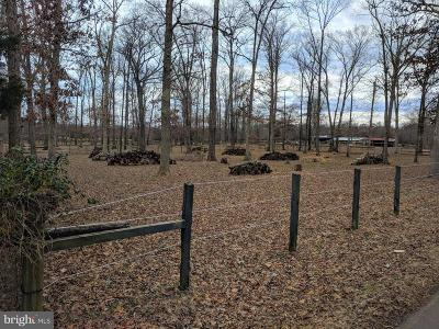 Centreville Residential Lots & Land For Sale: 7609 Bull Run Drive