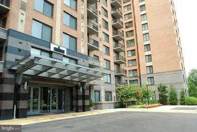 Alexandria Rental For Rent: 2451 Midtown Avenue #1307
