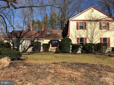 Fairfax County Single Family Home For Sale: 10300 Yellow Pine Drive