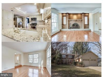 Fairfax Single Family Home For Sale: 8911 Glade Hill Road