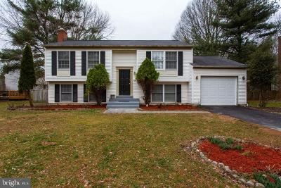 Herndon Single Family Home For Sale: 12623 Etruscan Drive