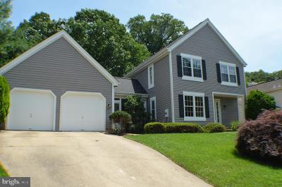 Fairfax County Single Family Home For Sale: 2867 Spring Chapel Court