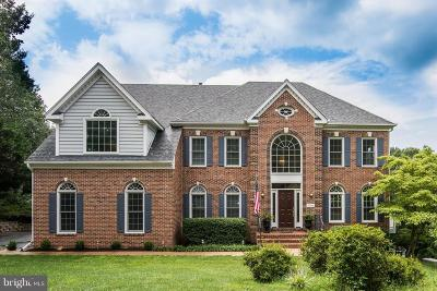 Fairfax County Single Family Home For Sale: 11416 Green Moor Lane
