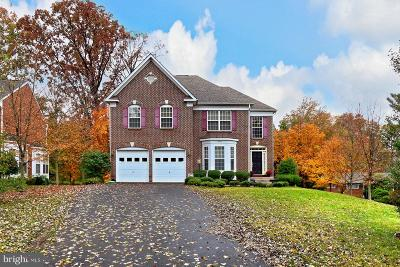 Annandale, Falls Church Single Family Home For Sale: 4000 Ridge Road