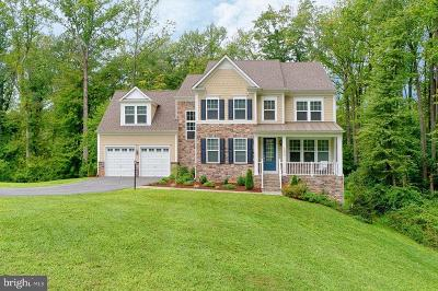 McLean Single Family Home For Sale: 1294 Scotts Run Road