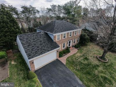 Centreville, Clifton Single Family Home For Sale: 15553 Eagle Tavern Lane