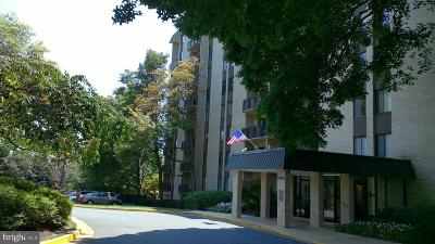Annandale, Falls Church Condo For Sale: 6001 S Arlington Boulevard #702