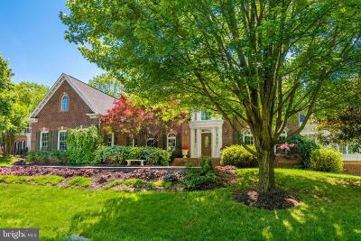 Reston, Herndon Single Family Home For Sale: 1075 Cedar Chase Court