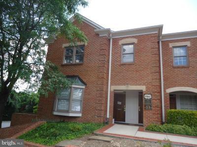 Annandale, Falls Church Condo For Sale: 4216 Evergreen Lane #131