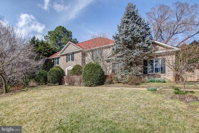 McLean Single Family Home For Sale: 6802 Langley Springs Court