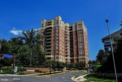 Reston, Herndon Condo For Sale: 11776 Stratford House Place #704