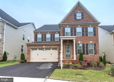 Fairfax Single Family Home For Sale: 11463 Cranebill Street