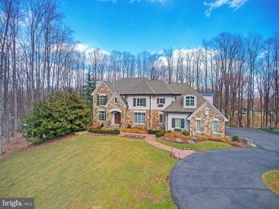 Fairfax County Single Family Home For Sale: 9998 Blackberry Lane