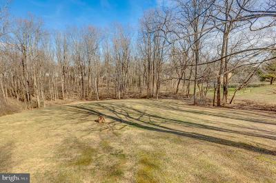 Great Falls Residential Lots & Land For Sale: 10101 Captain Hickory Place