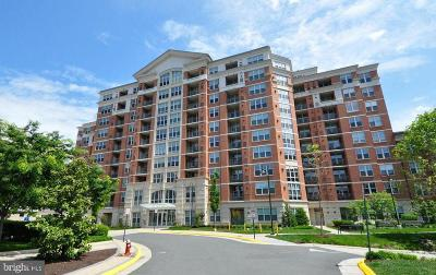 Reston Condo For Sale: 11760 Sunrise Valley Drive #808