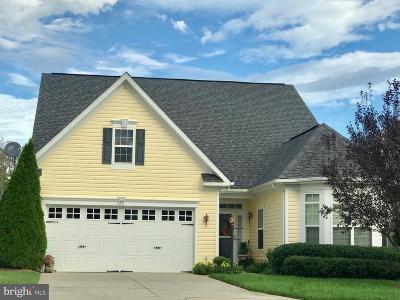 Greene County Single Family Home For Sale: 44 John Rucker Drive