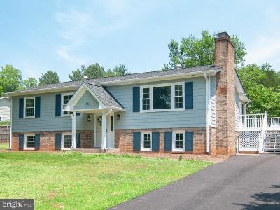 Greene County Single Family Home For Sale: 50 Valley Road