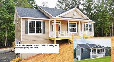 Greene County Single Family Home For Sale: 95 Mills Hollow Lane Lane