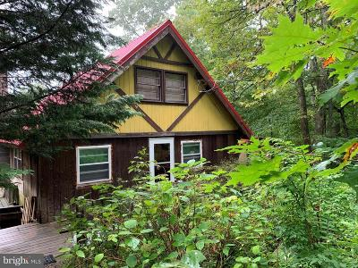 Greene County Single Family Home For Sale: 2311 Barrow Lane