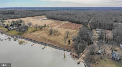 King George Residential Lots & Land For Sale: Lot 2 Mathias Point On The Potomac River