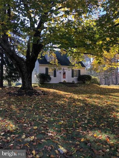 Louisa County Single Family Home For Sale: 20706 Louisa Road