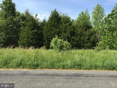Louisa County Residential Lots & Land For Sale: 5291 Paynes Mill Road