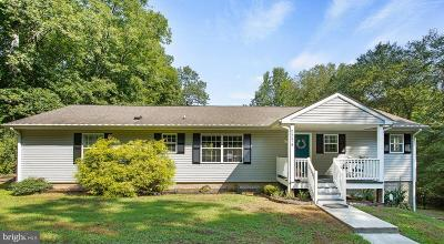 Louisa Single Family Home For Sale: 2274 S Lakeshore Drive