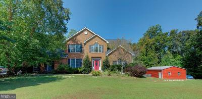 Louisa County Single Family Home For Sale: 374 Shannon Glen Drive