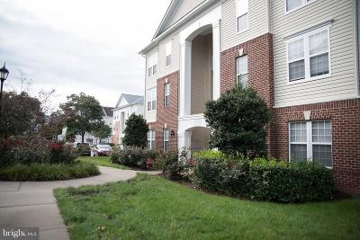 Ashburn Condo For Sale: 42492 Mayflower Terrace #103