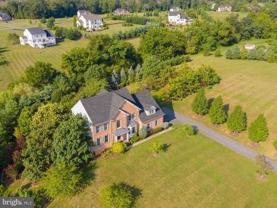 Leesburg Single Family Home For Sale: 42121 Glynn Tarra Place