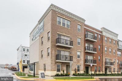 Brambleton Condo For Sale: 42831 Littlehales Terrace