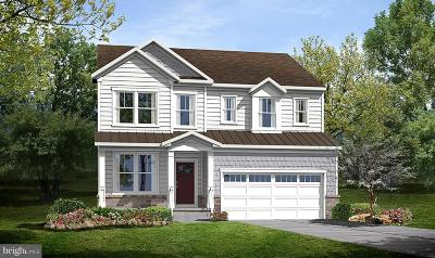Leesburg Single Family Home For Sale: 234 Dizerega Court