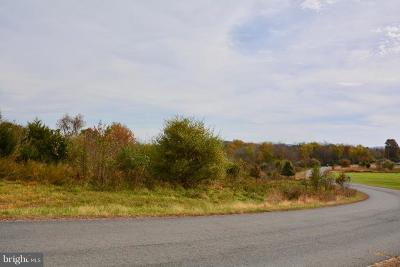 Lovettsville Residential Lots & Land For Sale: 11584 Mica Place