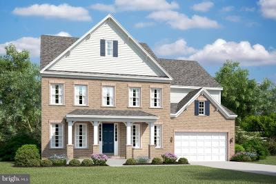 Aldie Single Family Home For Sale: Nicholson Meadows Place