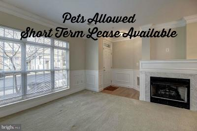 Aldie Rental For Rent: 42280 Terrazzo Terrace
