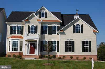 Loudoun County Single Family Home For Sale: Skyfield Ridge