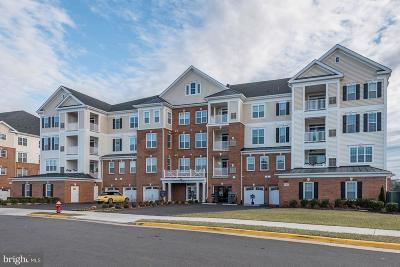 Ashburn Condo For Sale: 44589 York Crest Terrace #304