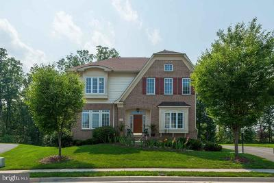 Chantilly Single Family Home For Sale: 24933 Castleton Drive
