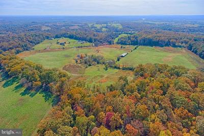 Leesburg Residential Lots & Land For Sale: 43660 Spinks Ferry Road