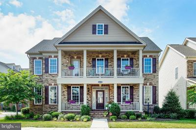 Ashburn Single Family Home Under Contract: 43071 Old Ryan Road