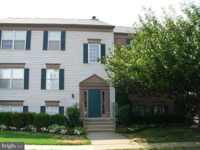 Leesburg Rental For Rent: 1107 Huntmaster Terrace NE #302