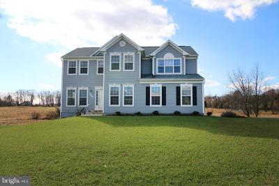Leesburg Rental For Rent: 42212 Lamz Place