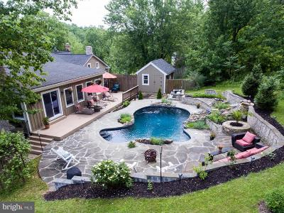 Single Family Home For Sale: 36847 Stony Point Road