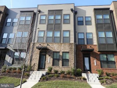 Ashburn Rental For Rent: 22325 Tees Terrace